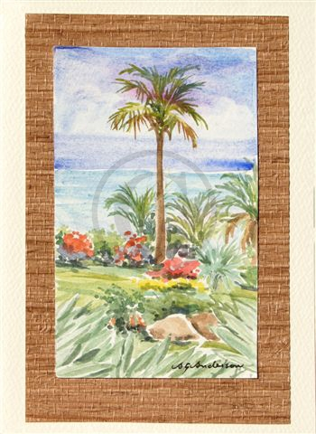 Palm Vision